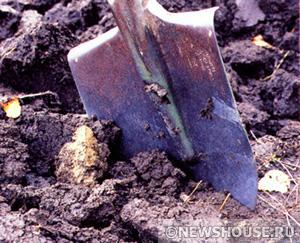 Почвы. Виды и состав