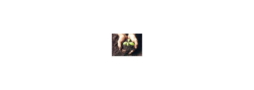 Измельчитель садовых и бытовых отходов