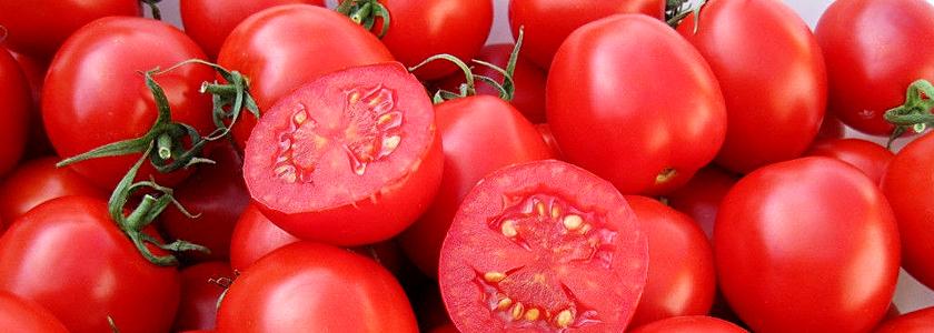 Как собрать и сохранить семена помидоров и огурцов