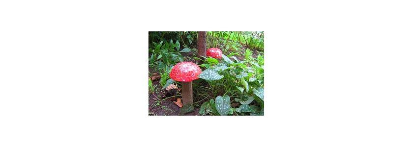 Сказочные грибы в саду