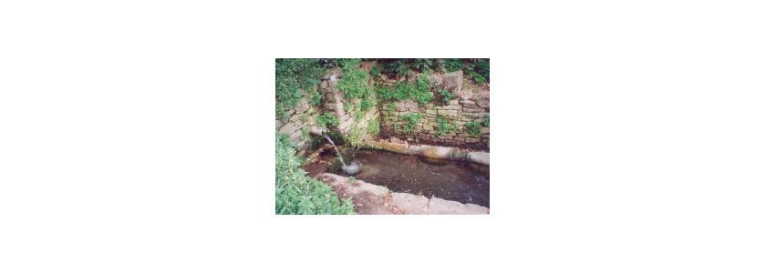 Признаки грунтовых вод: советы участников форума