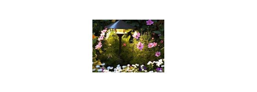 Освещение сада. Назначение и виды применяющихся ламп