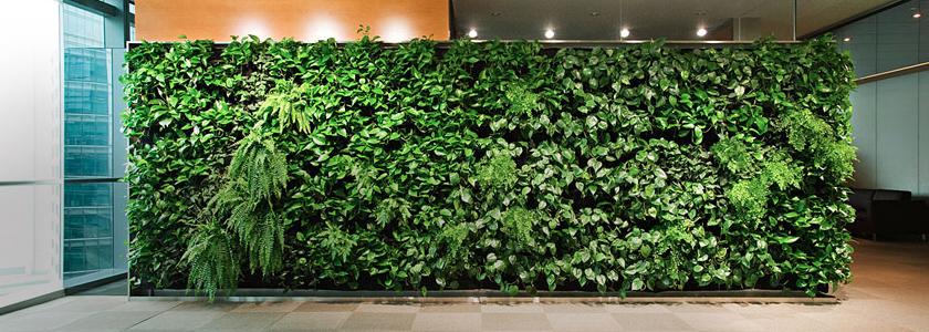 Живая стена – вертикальное озеленение в интерьере