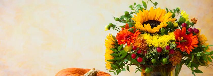 Дачные цветы – на школьной линейке. Составляем красивый букет