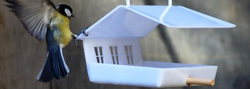 Кормушка для птиц из обычных материалов своими руками