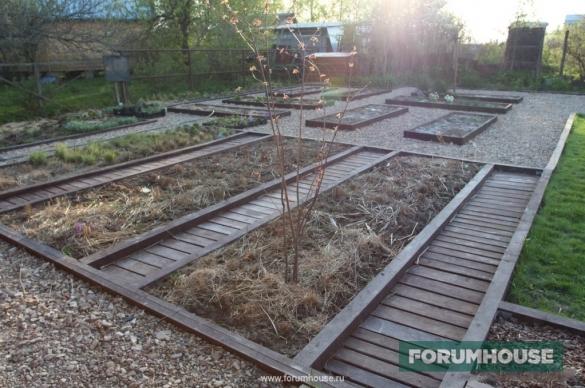 Фото деревянный настил в зоне огорода