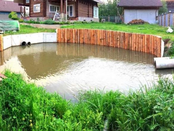 Фото дренажный пруд на участке