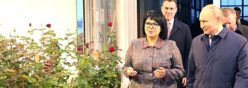 Президент РФ В.В. Путин оценил цветущие в декабре розы, выращенные на субстрате Grodan от ROCKWOOL