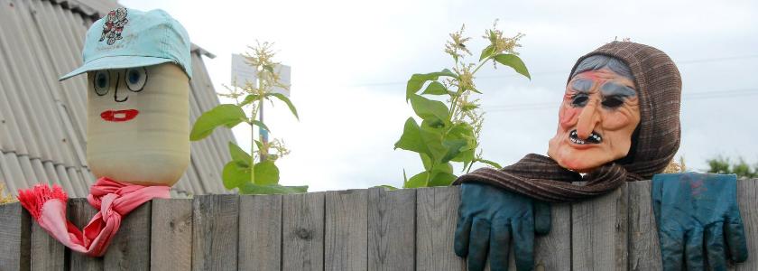 Усилится контроль над садоводами