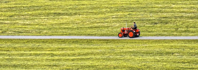 Путин может разрешить строить дома на землях сельхозназначения