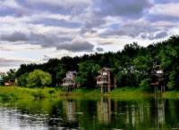 Дом в лесу или как воспарить над водой