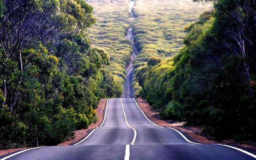 Проблемы строительства загородных дорог, или война за накатанный путь к любимому дому