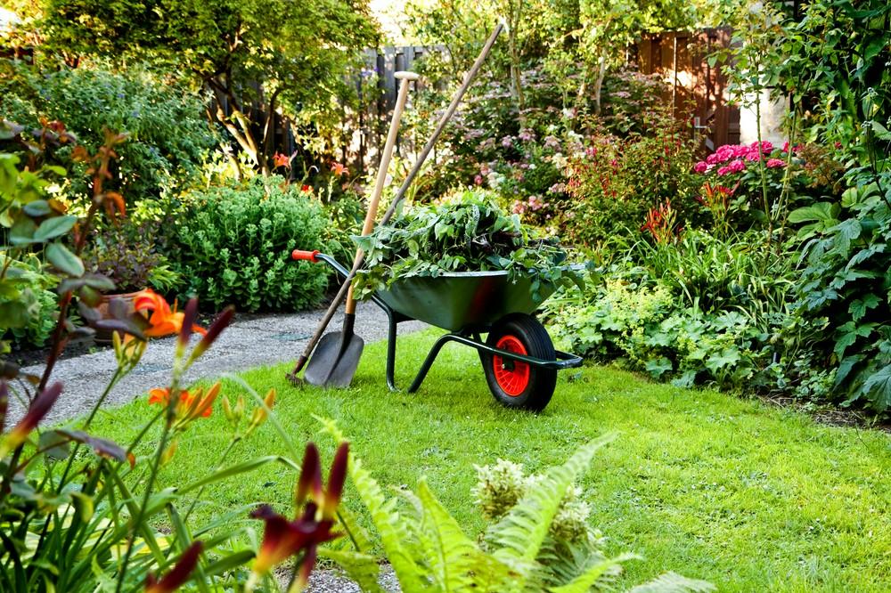 Садовая техника в помощь - подборка новинок в сфере ухода за участком