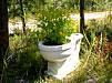 Экологичный дачный  туалет