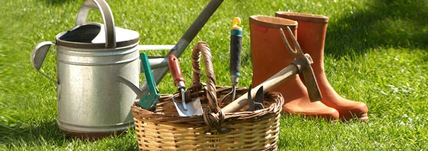 Садовая техника и инструменты. Новинки рынка