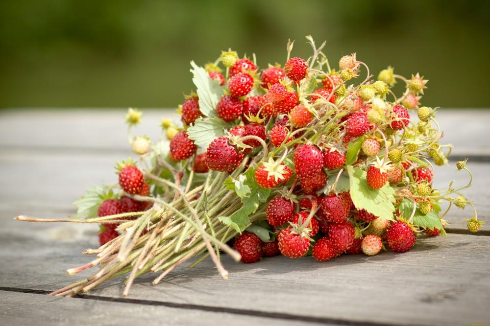Необычные рецепты заготовок из первых ягод и овощей