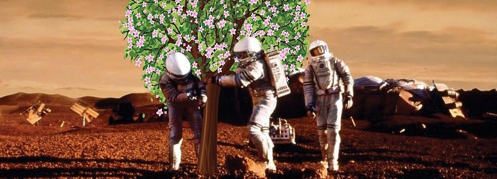 Ученые изобрели космическое удобрение