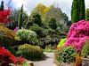"""""""Сад мечты"""" в английском стиле"""