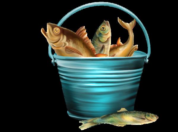 Запретили платную рыбалку – останется ли в водоемах рыба?