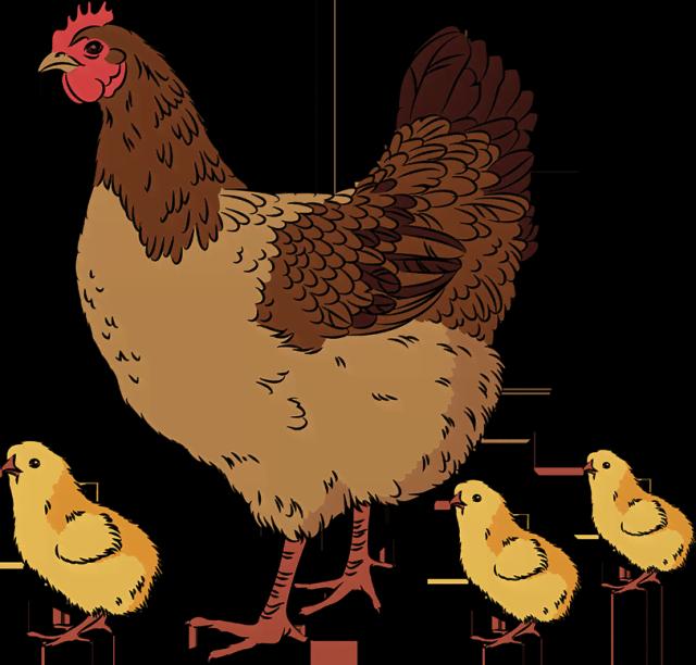 Выгодная домашняя птица: миф или реальность?
